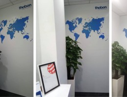 Visual Magnetics world map mural