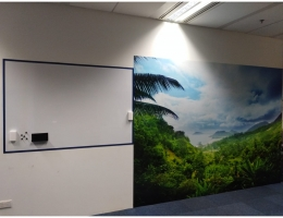 Magnetic wall art, 3.3m x 2.4m + magnetic <br>whiteboard 1.75m x 1.2mH